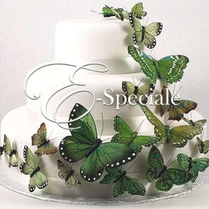 Farfalle decorative 24pz prodotti tema farfalle shop per tema accessori e gadget per - Farfalle decorative per pareti ...